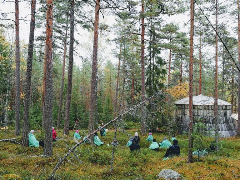 Metsähetki